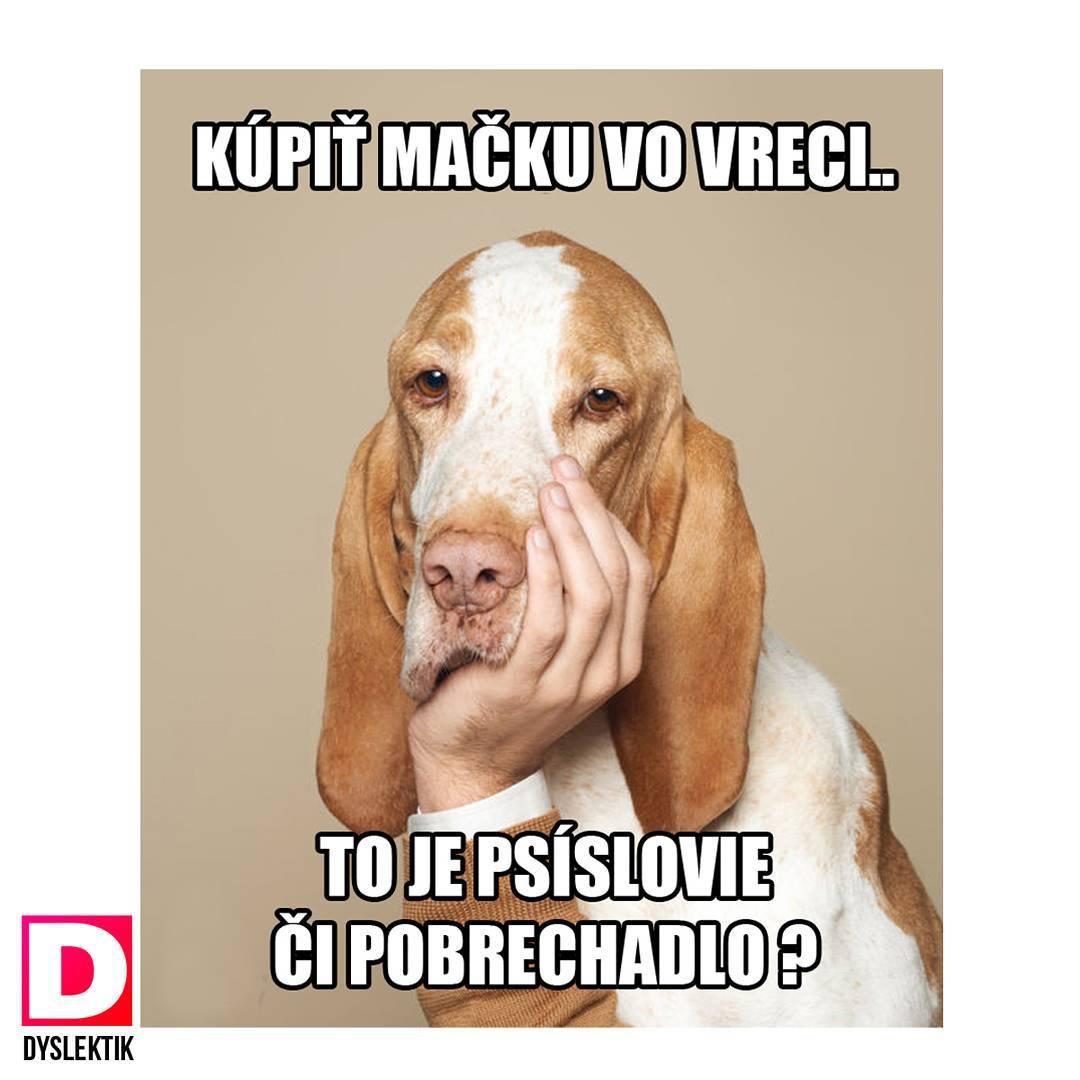 Slovné hračky dokážu zo slovenčiny spraviť celkom zábavný jazyk. Dyslektik to dokazuje už zopár týždňov
