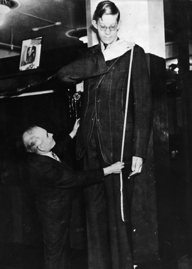 Robert Wadlow from Illinois, the world's tallest man at 8 ft 11 inches, being measured for a jacket. (Photo by Keystone/Getty Images)