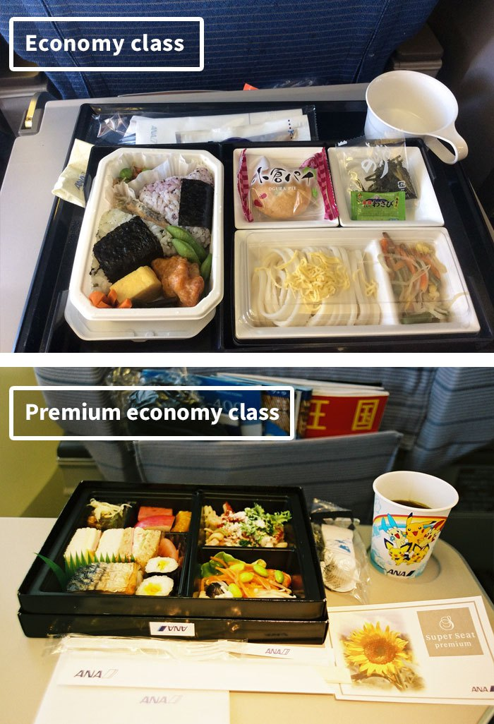 airline-food-business-vs-economy-compared-79__700