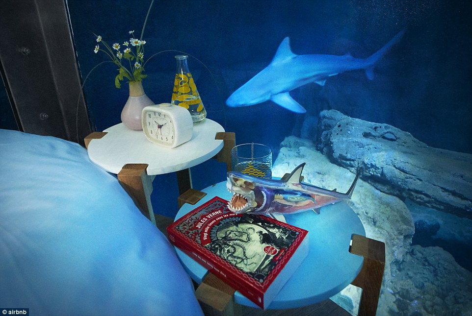 32A29F4C00000578-3513560-The_shark_themed_bedroom_will_be_available_for_three_days_after_-a-12_1459244318053