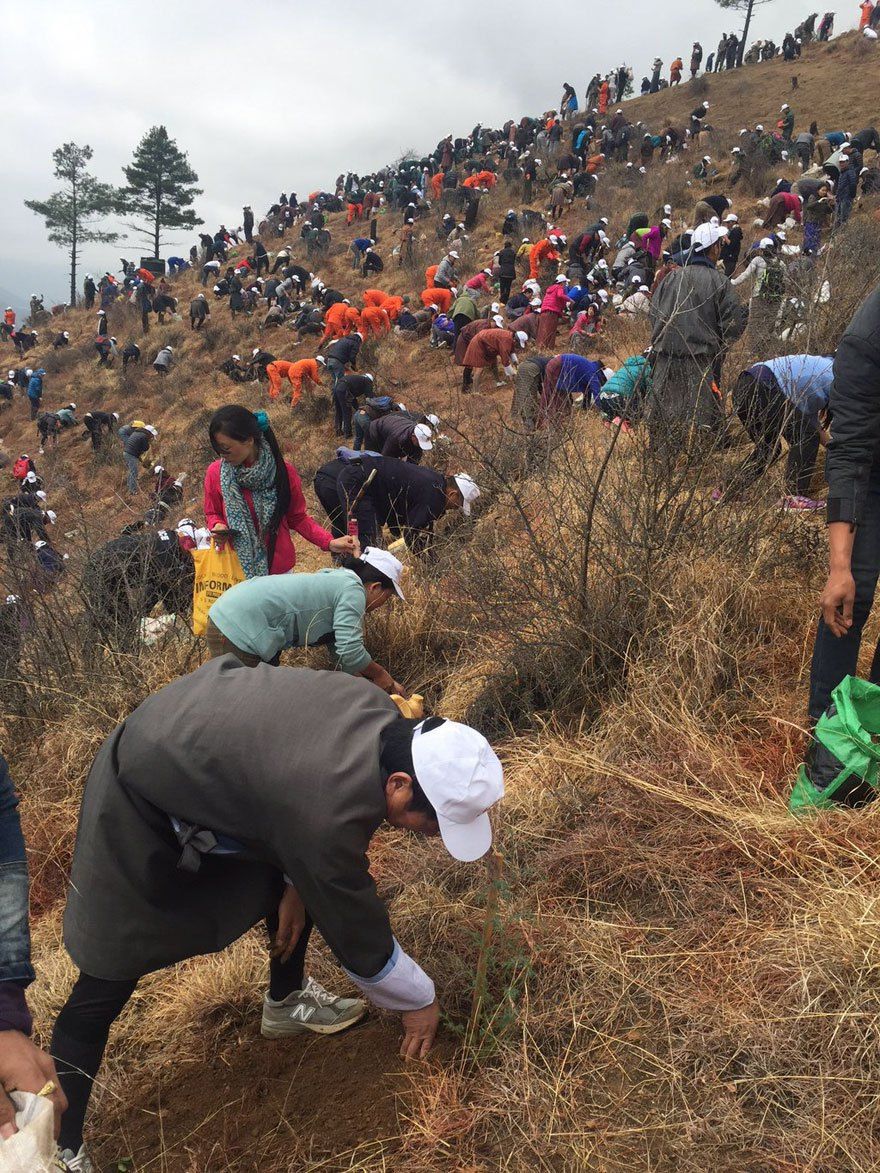 bhutan-prince-plants-trees-jetsun-pema-6
