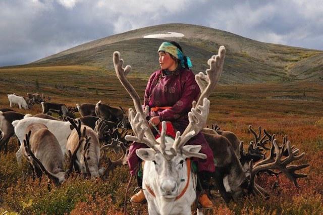 reindeerriders02