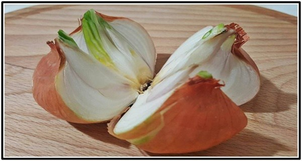 Cut A Whole Onion Into 4 Pieces And Place It In Your Home The Reason Brilliant