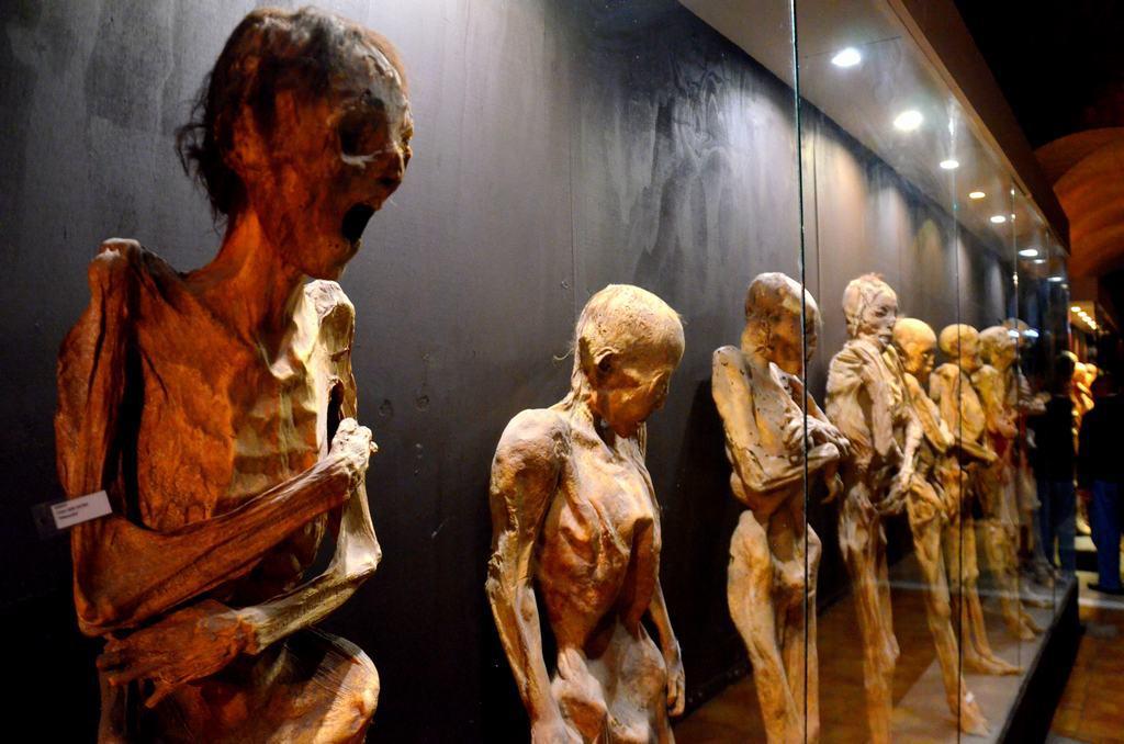 Colección-momias-de-Guanajuato-001