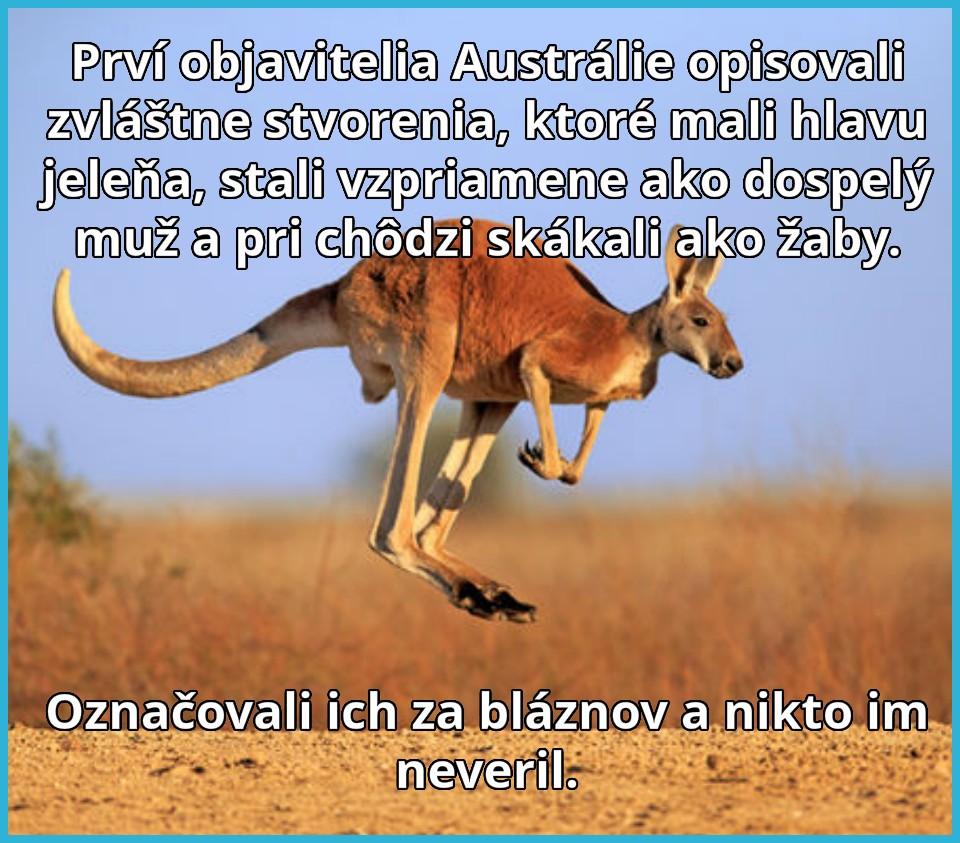 kengury