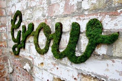 11-diy-moss-graffiti