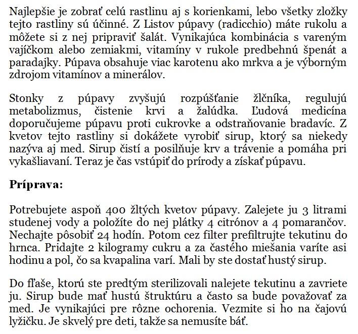 chillin.sk (24)