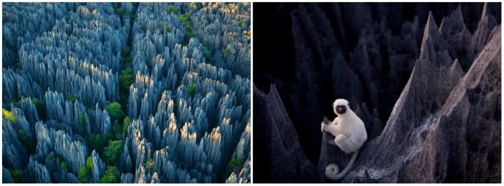 06.Madagaskar_2