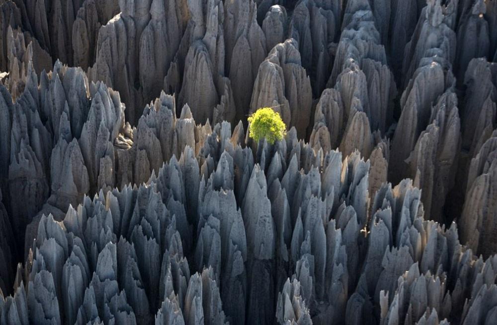 06.Madagaskar_1