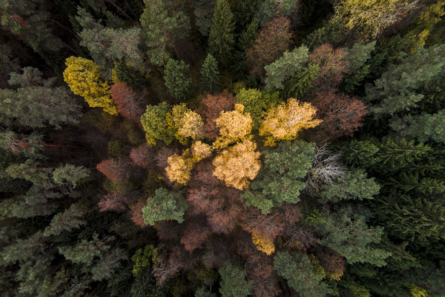 best-drone-photography-2016-dronestagram-contest-20-5783b745f0ce4__880