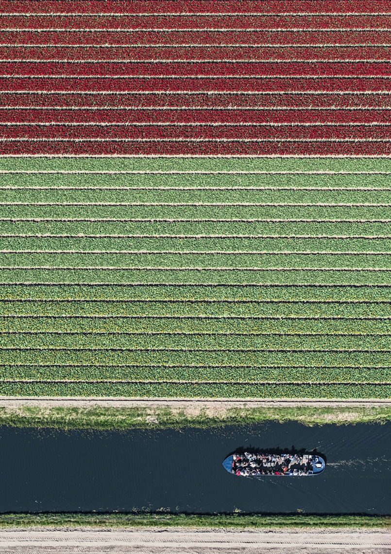 aerial-photos-show-just-how-beautiful-netherlands-tulip-fields-are6-1-805x1139
