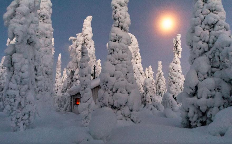 cozy-cabins-in-the-woods-106-57600c831cf70__880