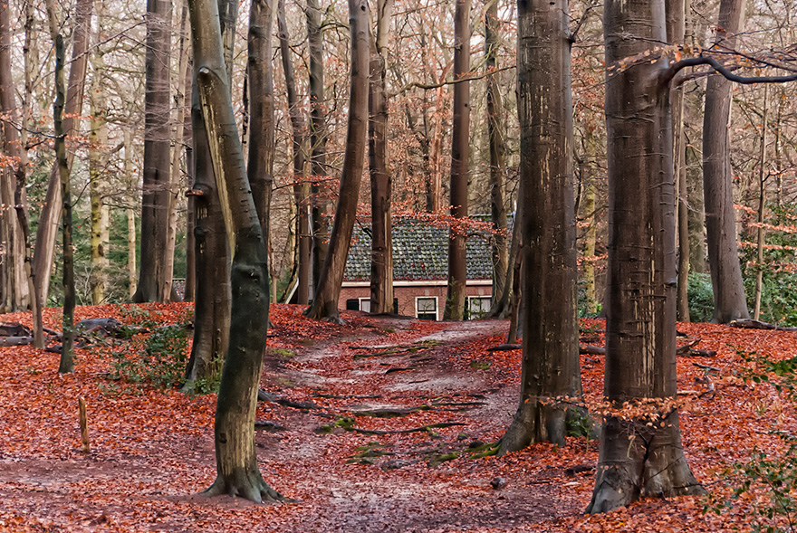 cozy-cabins-in-the-woods-40-575fd0a2746b4__880