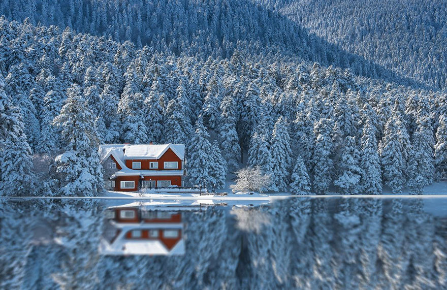 cozy-cabins-in-the-woods-100-57600756dfee6__880