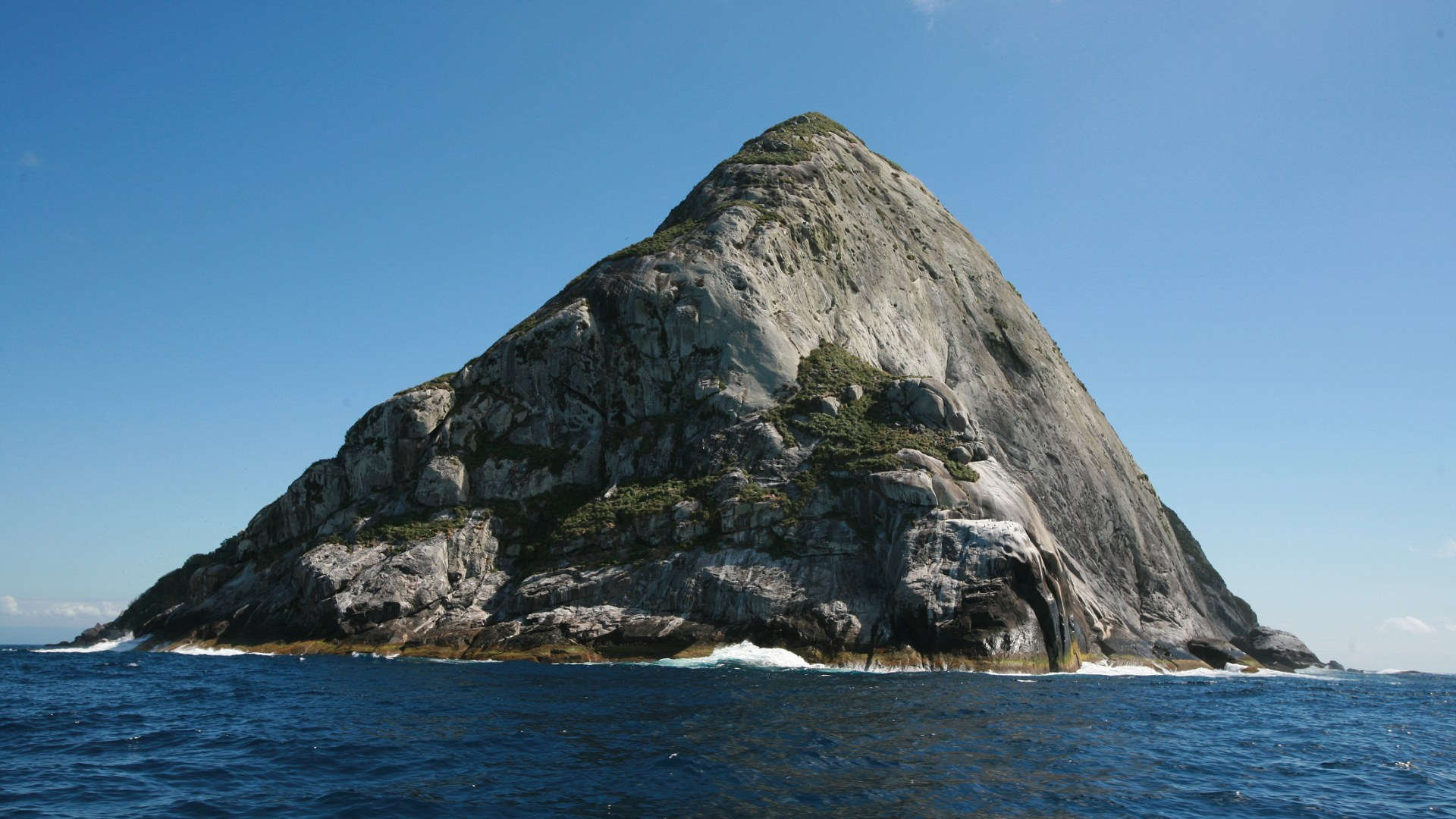 Queimada Grande Island, Itanha?m, SP