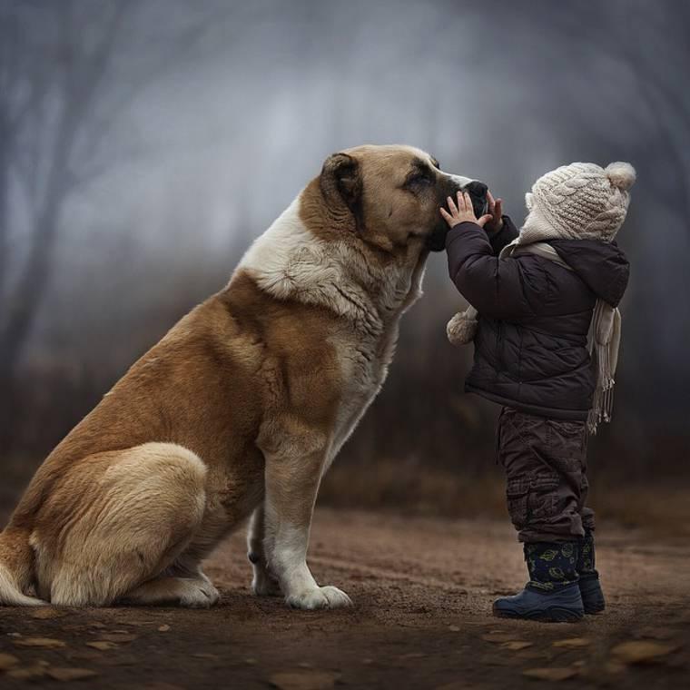 kids-and-animals-elena-shumilova-1