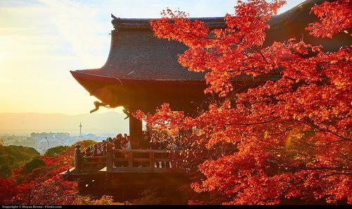 Japonsko dovolenka