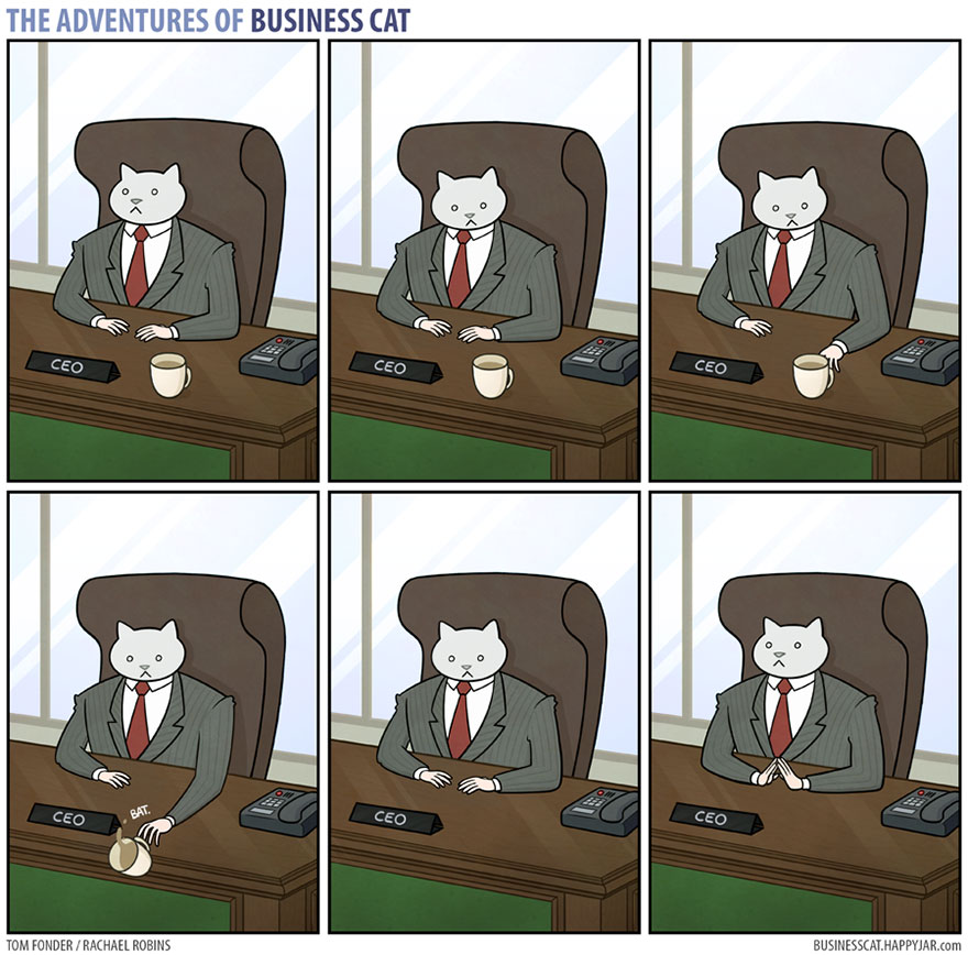 Veľká mačička vtipy