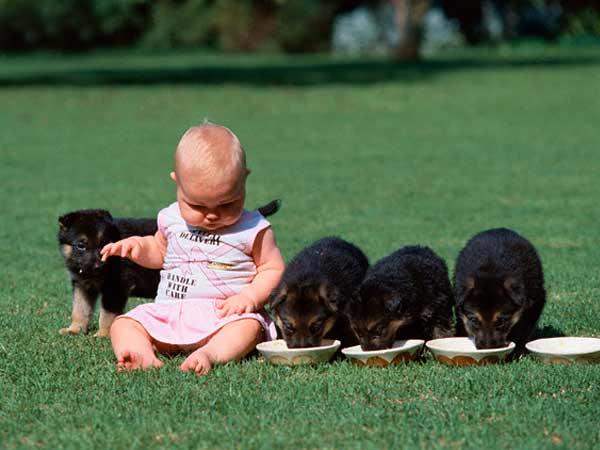 Výsledok vyhľadávania obrázkov pre dopyt child dog