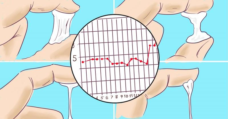 Беременность 3-5 дней