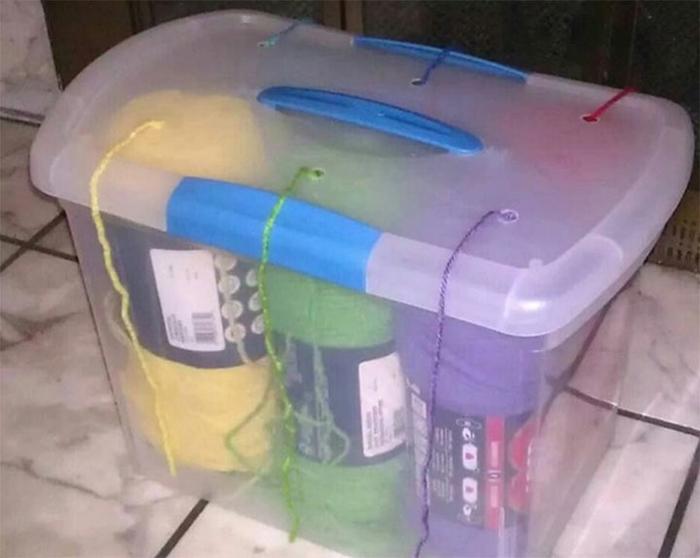 пластиковые контейнеры для хранения сыпучих продуктов