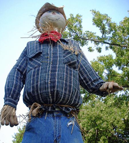Human scarecrow photo