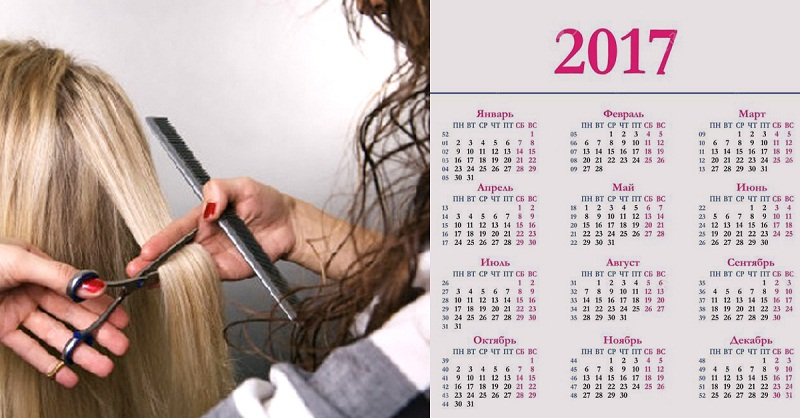 календарь стрижек