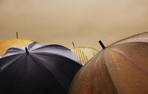 daždnik