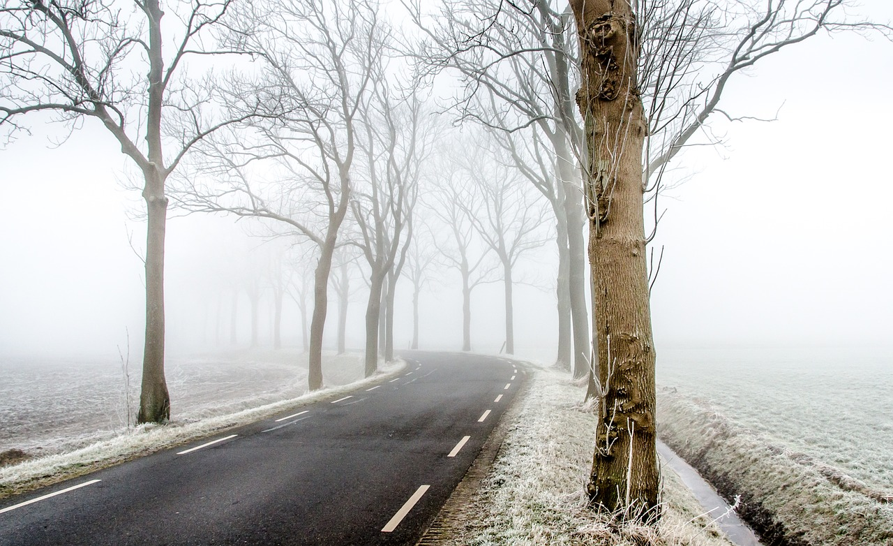 winter road fotografia