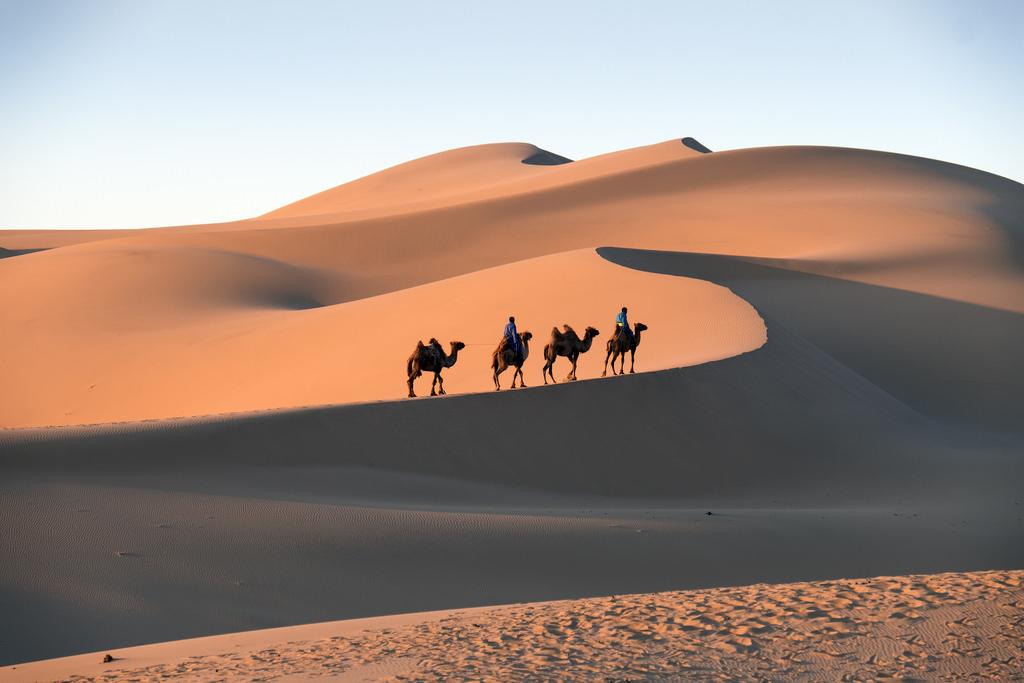 gobi desert fotografia