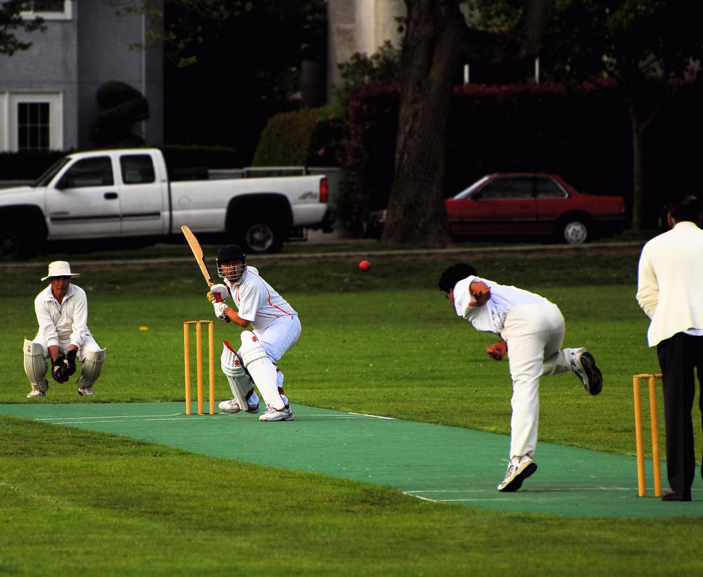 cricket fotografia