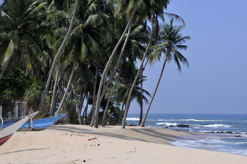 sri lanka beach fotografia
