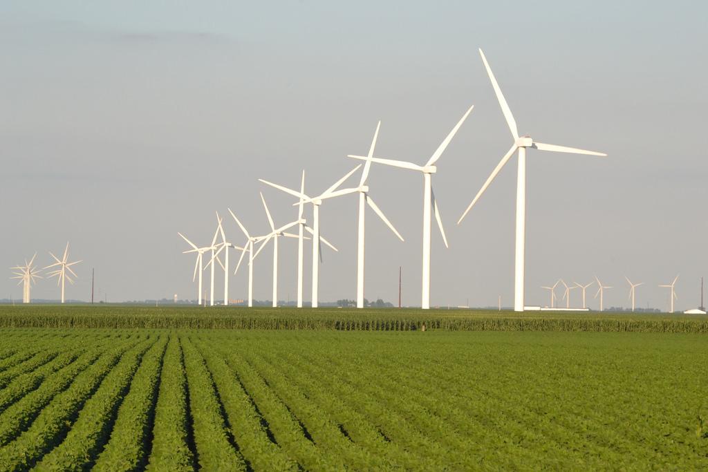 windmill fotografia