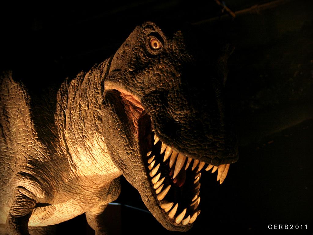 T-rex fotografia