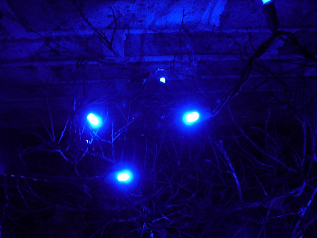 blue led light fotografia