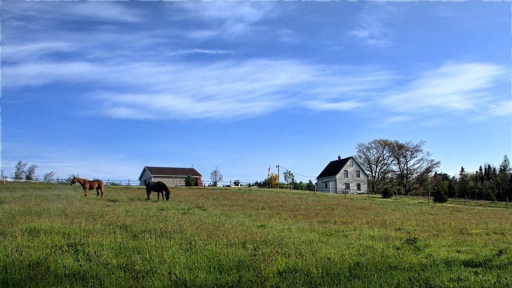farms fotografia