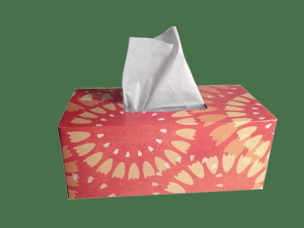 tissue box fotografia